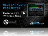 Read Tutorial - Blue Cat's Digital Peak Meter Pro Video Overview
